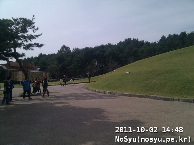 IMG_20111002_144846