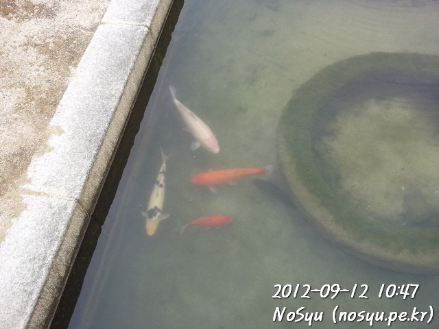 20120912_104758