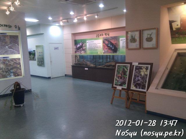 IMG_20120128_134714