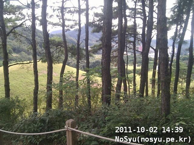 IMG_20111002_143933