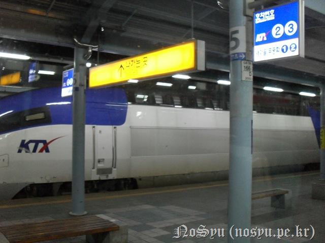 SDC10079