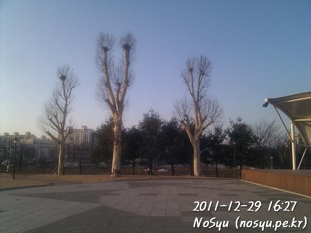 IMG_20111229_162711
