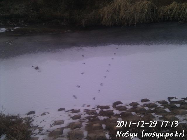 IMG_20111229_171336
