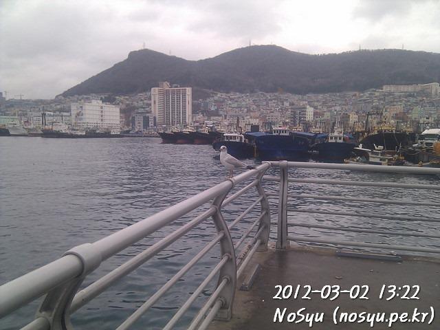 IMG_20120302_132232