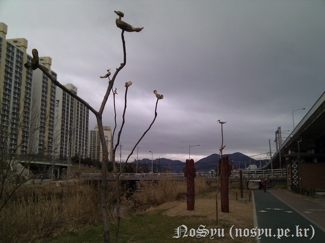 IMG_20110103_150431
