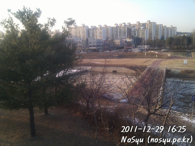 IMG_20111229_162559