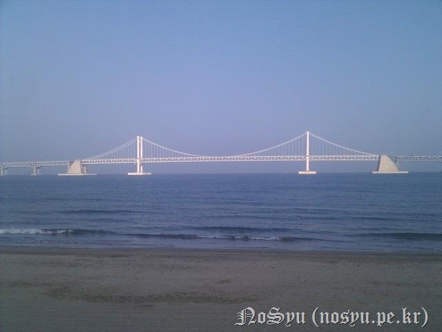 IMG_20110603_175817