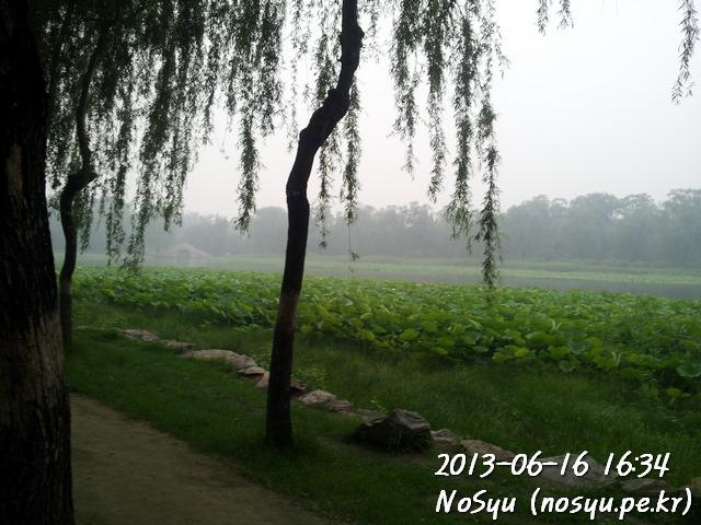 20130616_163414